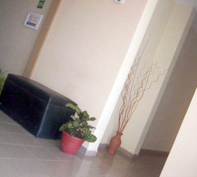 Hotel (81)